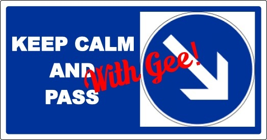 Pass with Gee